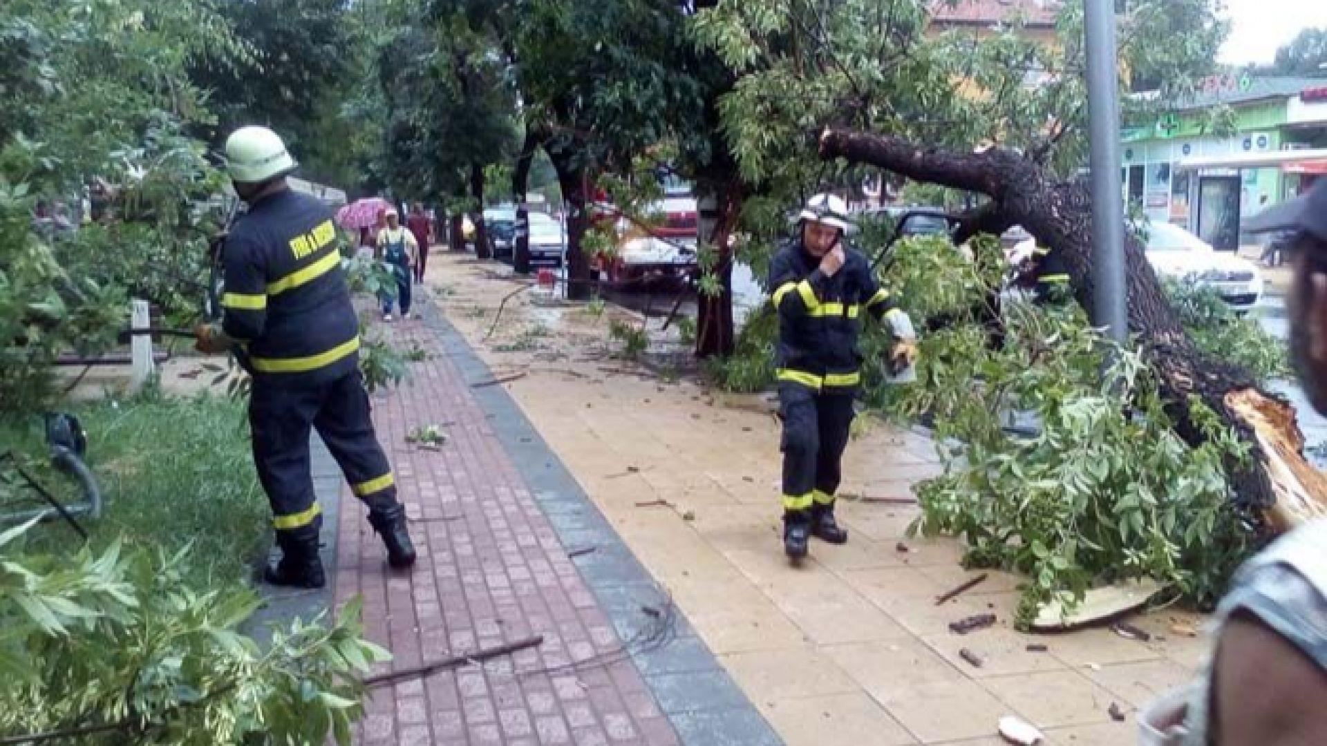 Буря потроши дървета и коли в Кърджали