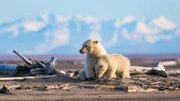 Откриха огромно количество микропластмаса в арктическия лед