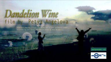 Български режисьор взе наградата за най-добър експериментален филм на фестивал в САЩ