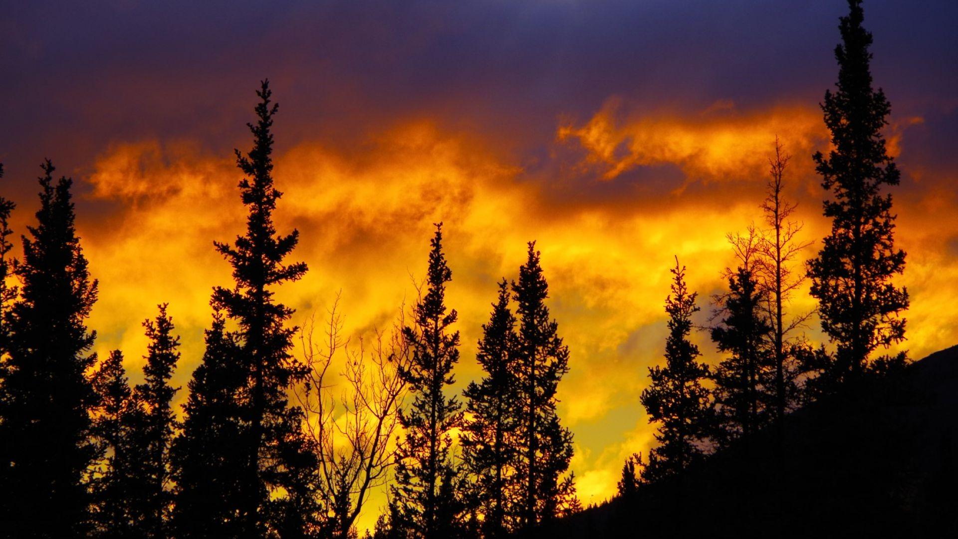 Силни горски пожари в Аляска заради горещините
