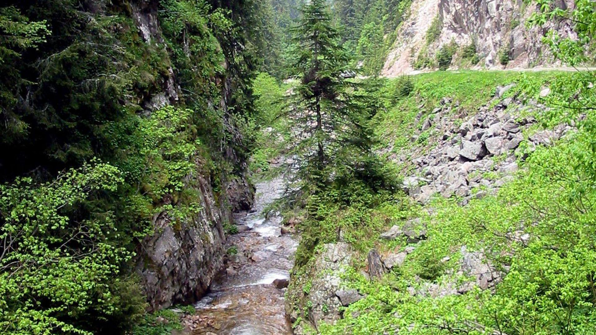 Алпинисти и доброволци търсят изчезнала пенсионерка  из стръмни скали