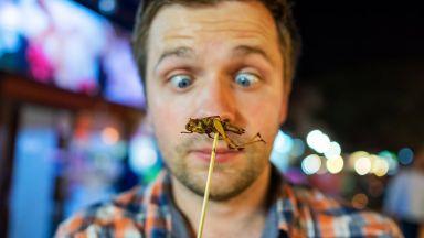 Ядливите насекоми са по-полезни от портокаловия сок
