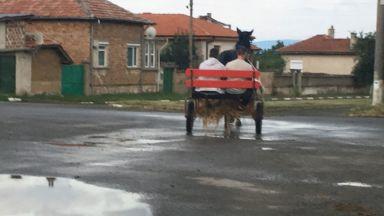 Кой е регистрирал каруцата - убиец без светлоотразители в община Казанлък?