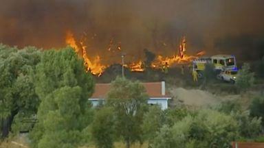 Огромен горски пожар бушува на 200 км от Лисабон (снимки и видео)