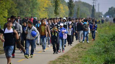 Словашката полиция задържа 30 мигранти