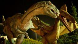 Ясна е причината за измирането на динозаврите