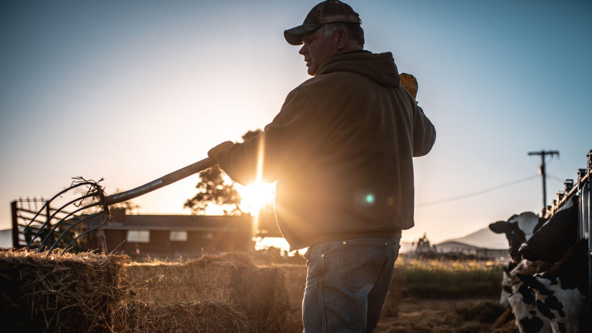 В САЩ плащат 16 млрд. долара помощи на фермерите, засегнати от търговската война с Китай