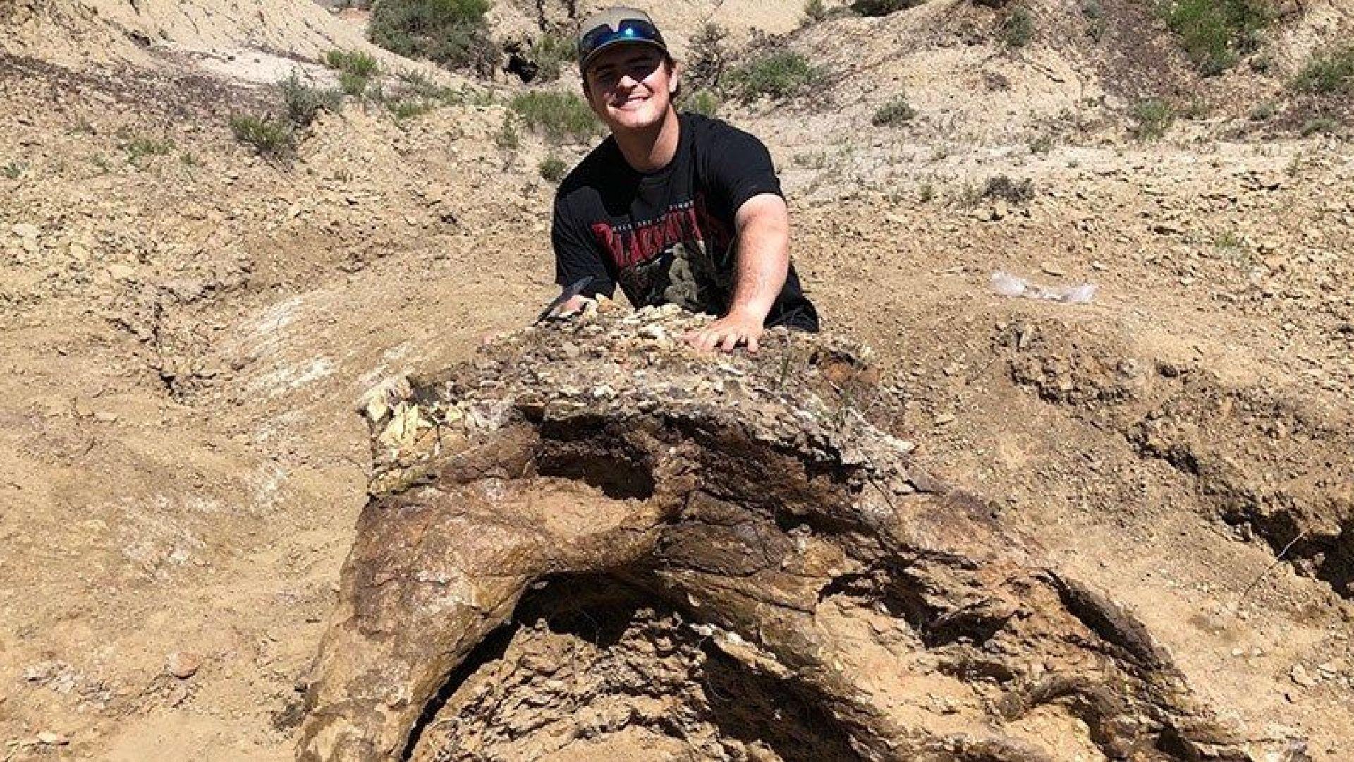 Снимка: Студент откри череп на динозавър на 65 млн. години