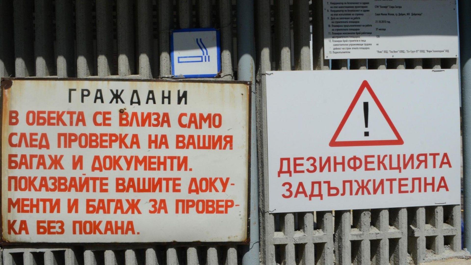 """В Пазарджишко """"няма никаква яснота"""" колко са домашните прасета"""