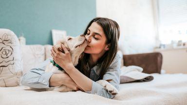 Вземете си куче за по-здраво сърце
