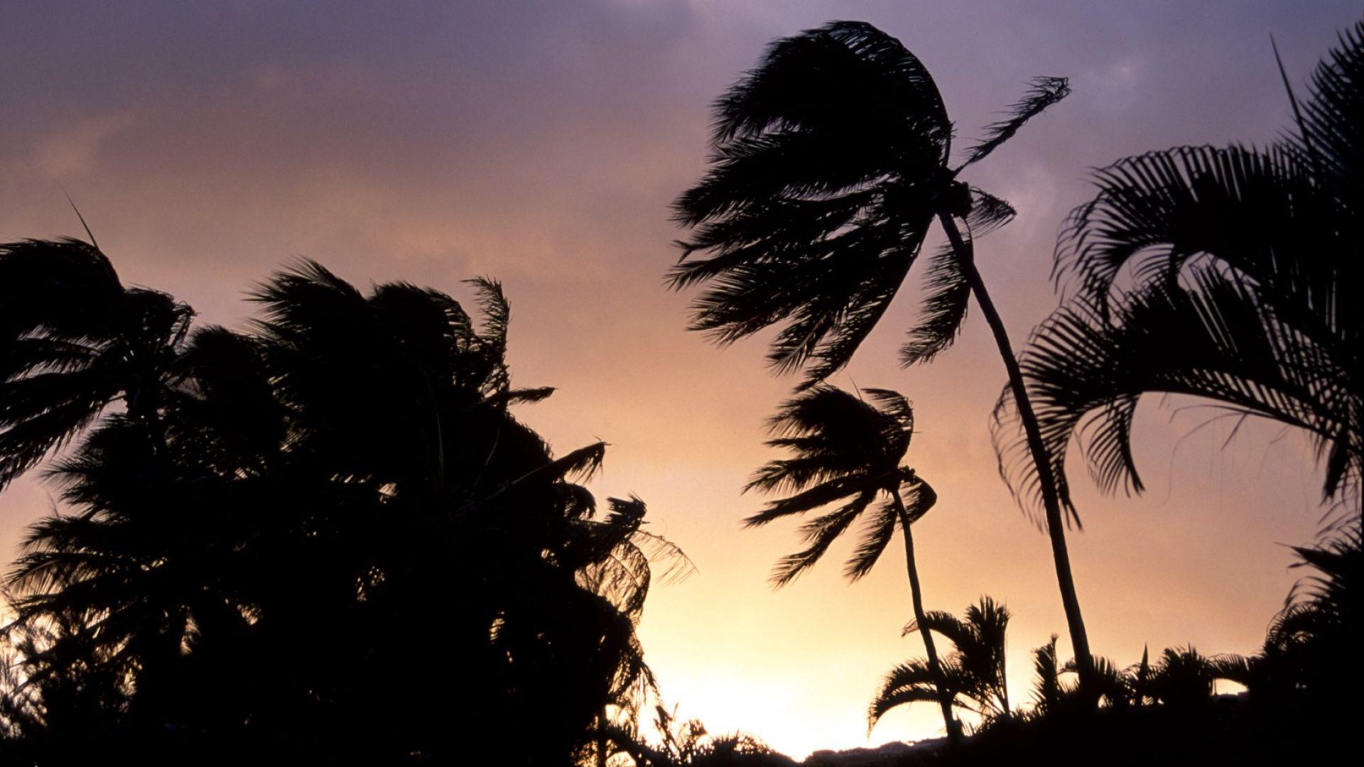 """Едновременно два урагана - Ерик и Флоси, са """"вдигнали мерника"""" на Хаваите"""