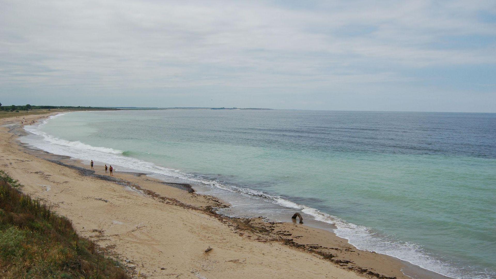 Мъртви кози изхвърли морето край Дуранкулак