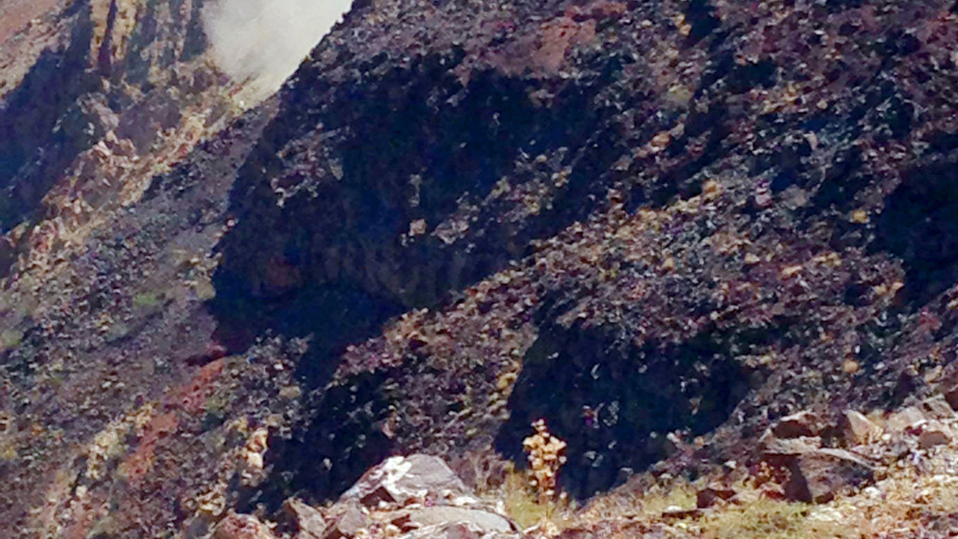 Американски изтребител се разби в Долината на смъртта (снимки)