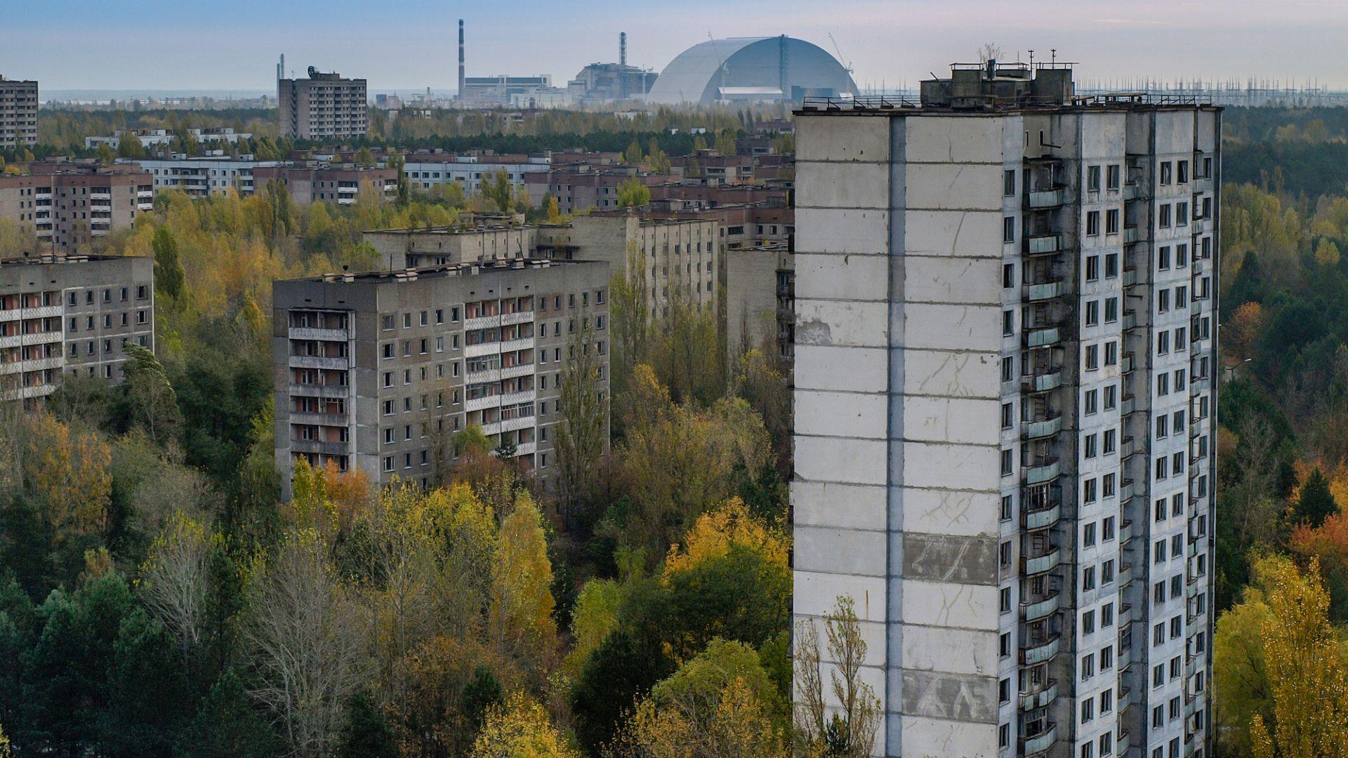 Плесен от Чернобил може да пази астронавтите от космическа радиация