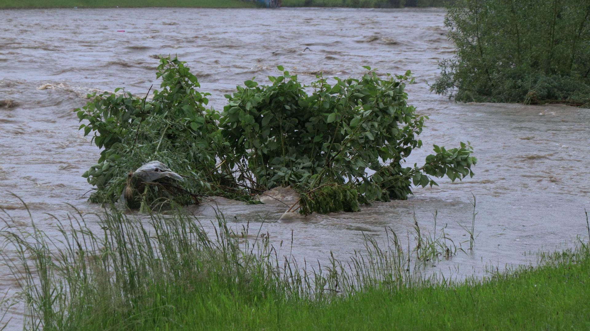Деца на 5 и 8 години оцеляха върху дънер в бурните води на Въча