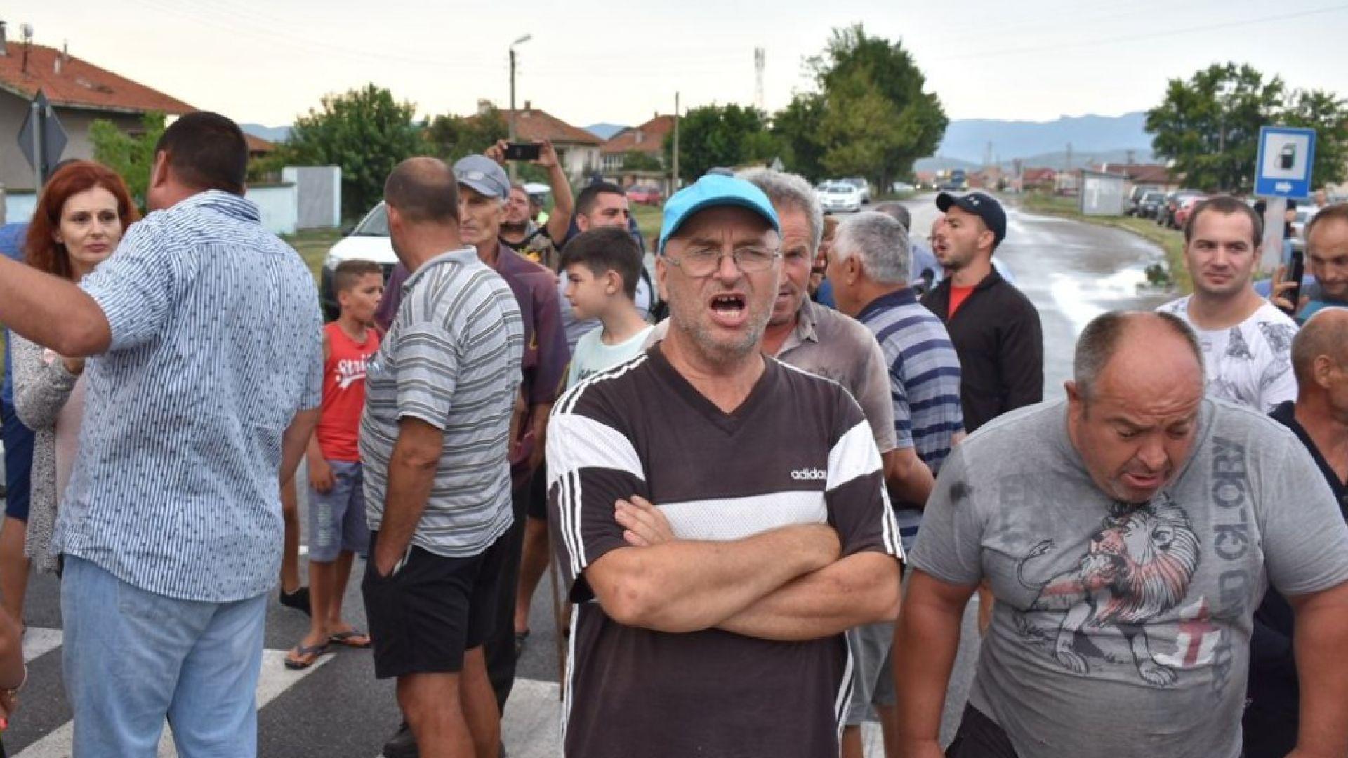 Бунт срещу клането на прасетата в Пловдивско. Недоволството расте и в страната