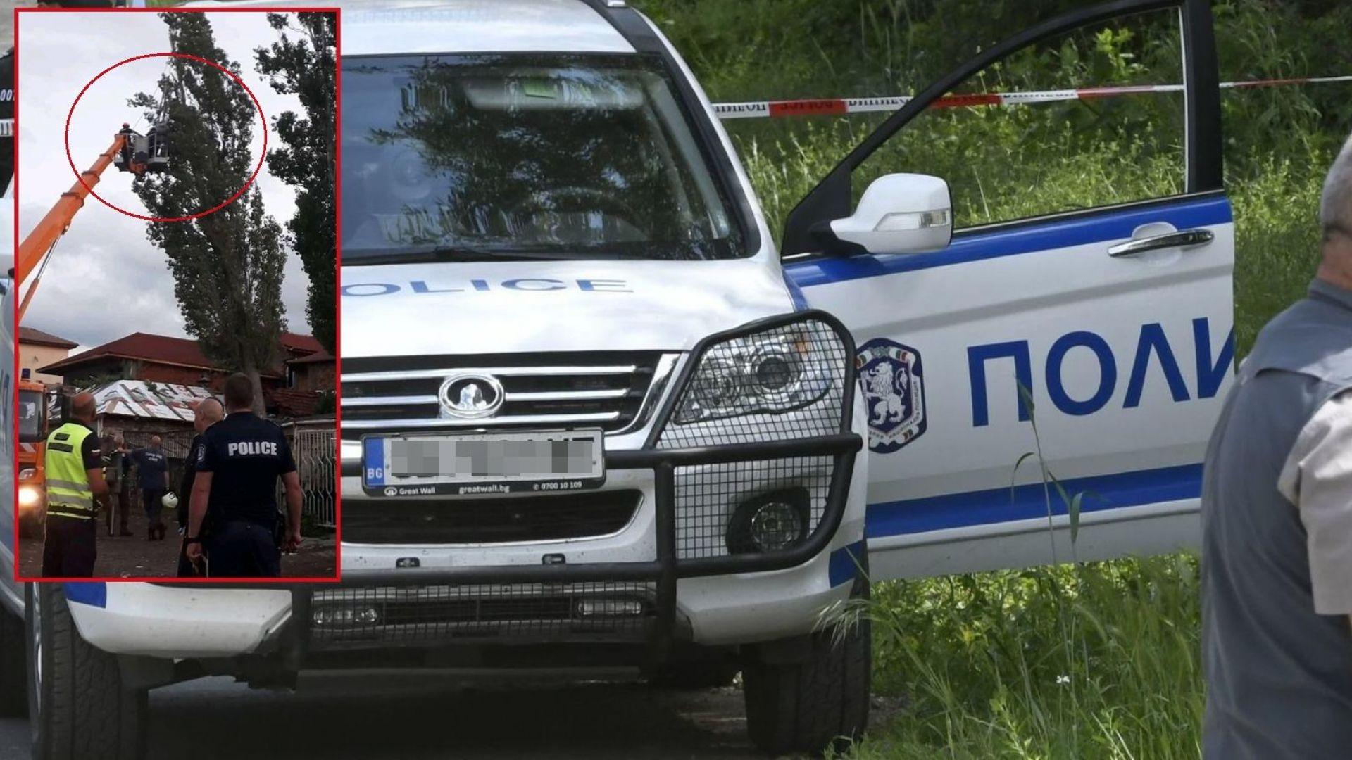 Полицаи и пожарникари спасиха живота на коте със зрелищна акция в София