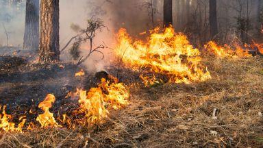 Големият пожар над Котел продължава, задими града