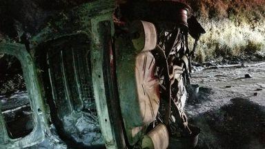 Мечка падна върху полицейска кола в САЩ, тя се обърна и избухна (снимки)