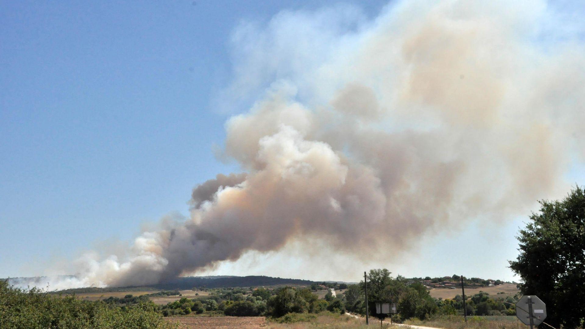 Пожар край Хасково застрашава борова гора, овладян е огънят край сливенските села