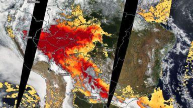 """Горят """"белите дробове на планетата"""" - пожари обхванаха и Амазония"""