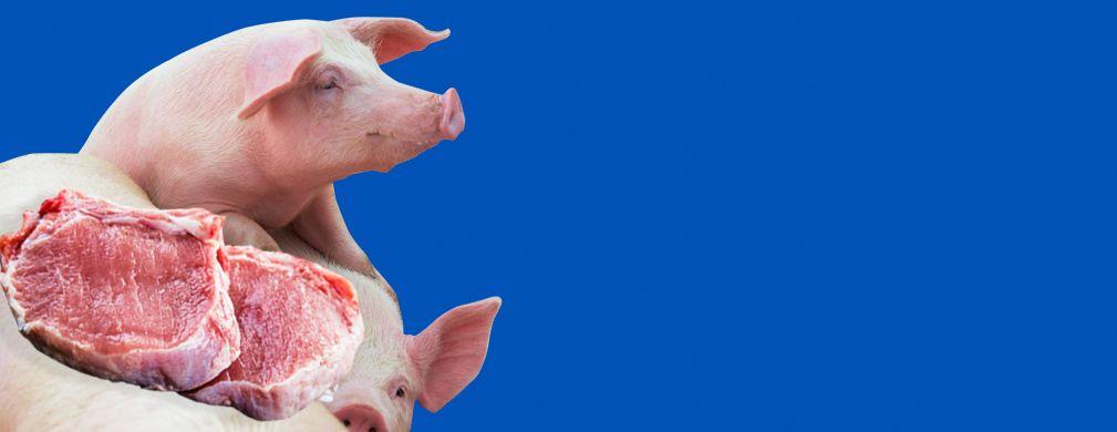 Ще спрете ли да купувате свинско месо, ако цената му скочи заради африканската чума?