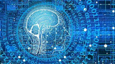 Учени свързаха в мрежа три човешки мозъка