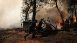 Гръцките власти откриха улики за умишлен палеж на горите (снимки)