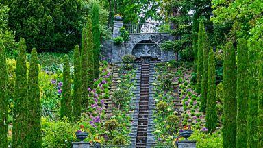 Островът на цветята Майнау