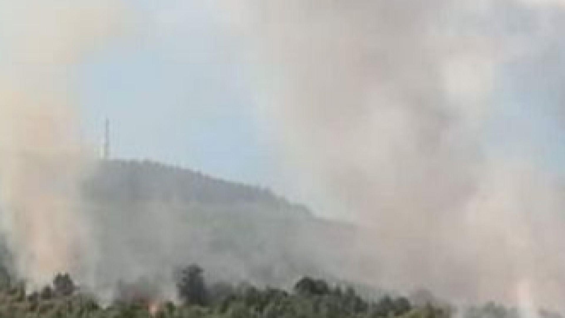 Снимка: Пожар обхвана гори край софийското село Ребърково