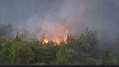 Работници с резачка запалиха 1000 декара край Харманли, това не бил първият им пожар