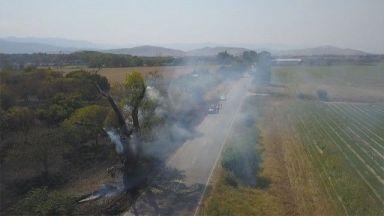 Пожарът край Кричим унищожи орехова гора, стигна до помощното стопанство на двореца