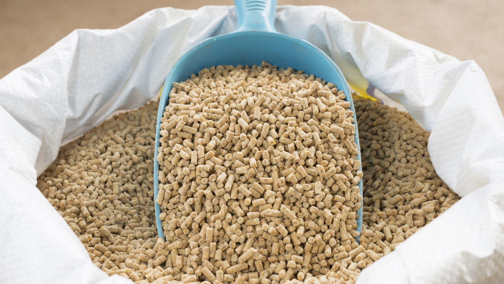 БАБХ проверява влязла у нас фуражна суровина от Бразилия за наличие на салмонела