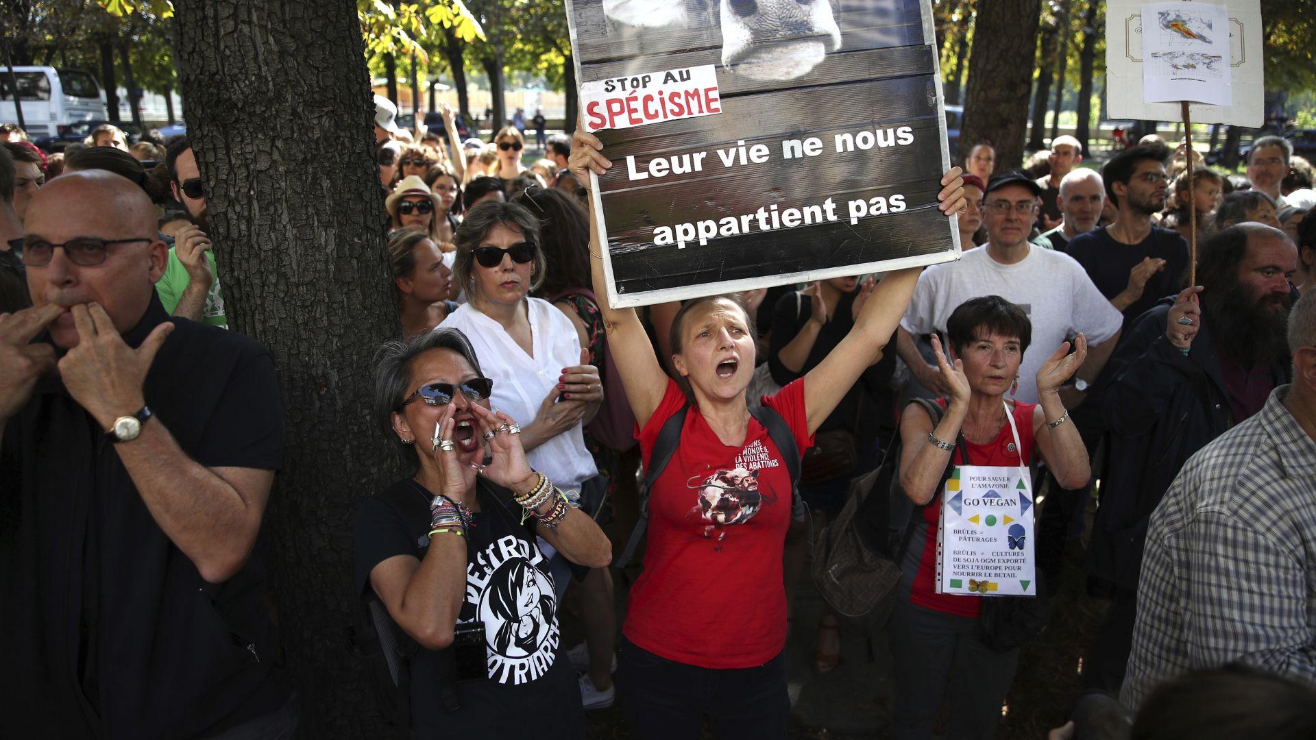 Двама български демонстрантибяха поканени на среща с бразилския посланик, след