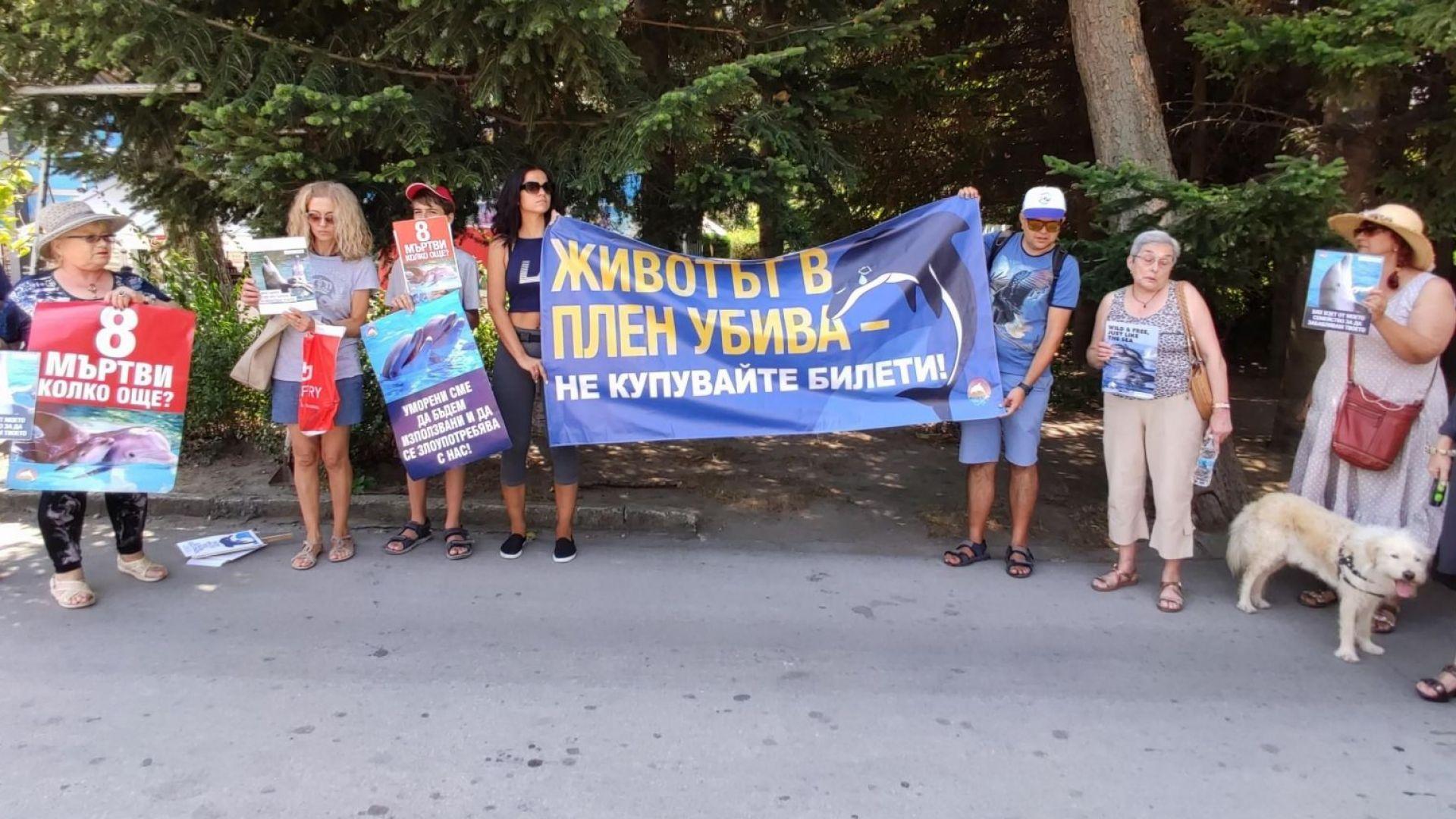 Варненци искат закриването на Делфинариума, ръководството излезе с позиция  (снимки)