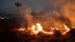 Зад пожарите в Амазония стои световният апетит за бразилско говеждо и бразилска соя