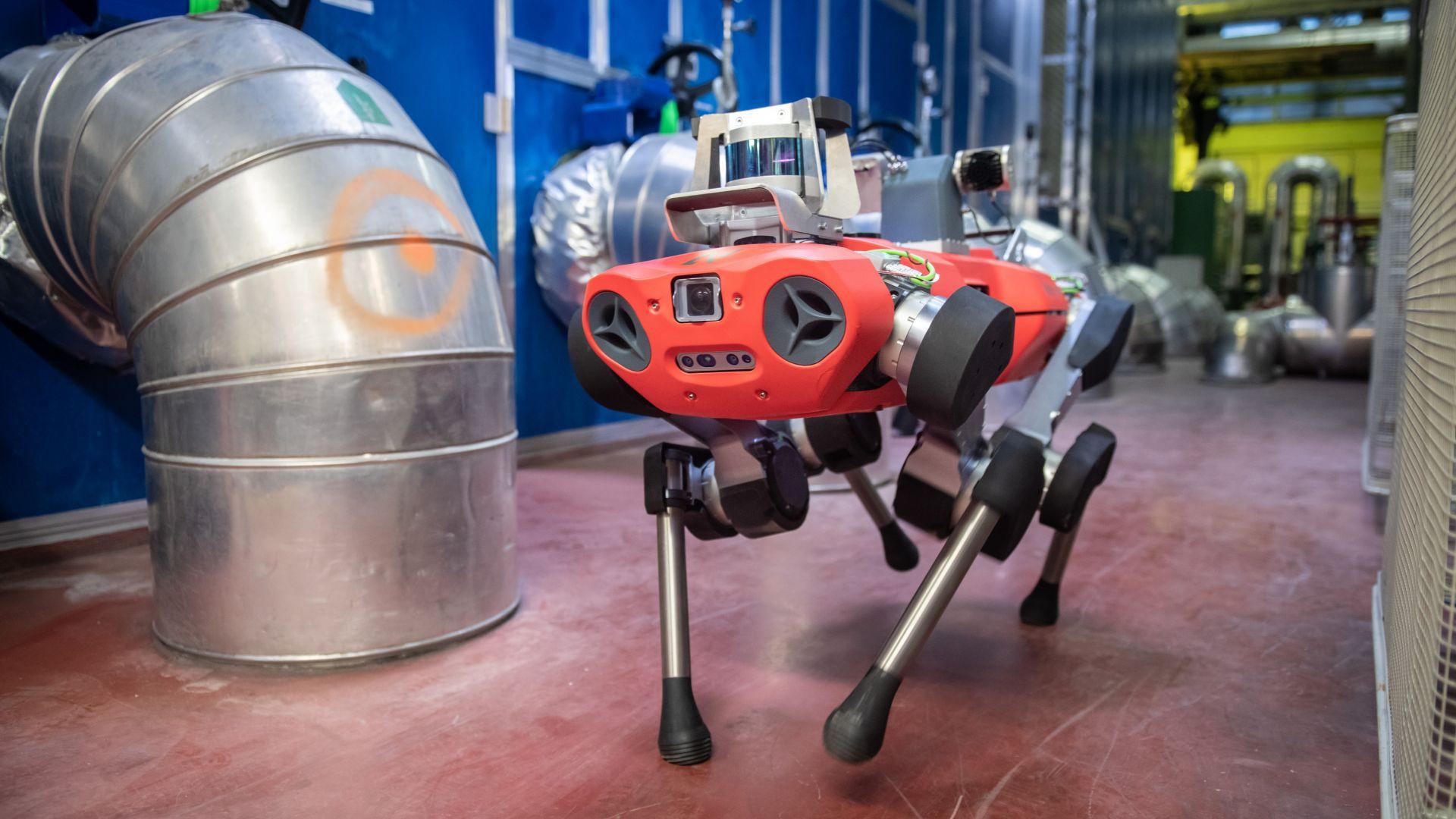 Швейцарци пускат подобрен четириног робот