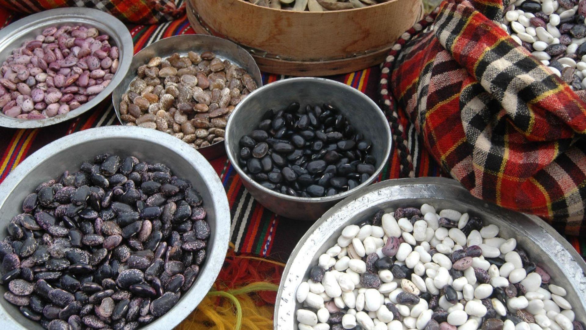 Къде расте най-вкусният фасул?