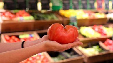 Каква е магията на вкусния домат от Петрич?