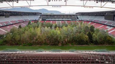 В Австрия залесиха с 300 дървета футболен стадион