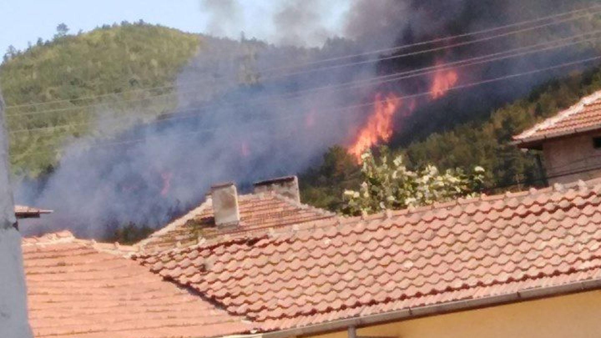 Пожарникари, лесничеи и доброволци гасят пожар в горски масив над
