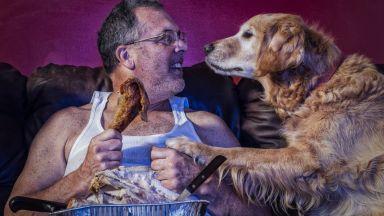 Суровото месо крие рискове за домашните любимци