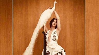 Моника Белучи стилна и сексапилна с къса коса