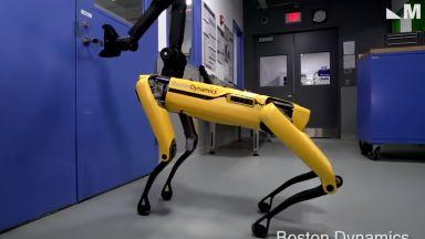 Четириноги роботи от военен проект може да бъдат изпратени в цирка