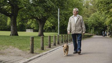 Притежаването на куче може да намали риска от смърт с до 65%