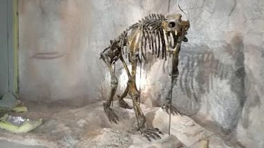 Уникален музей на пещерите отваря врати в Чепеларе