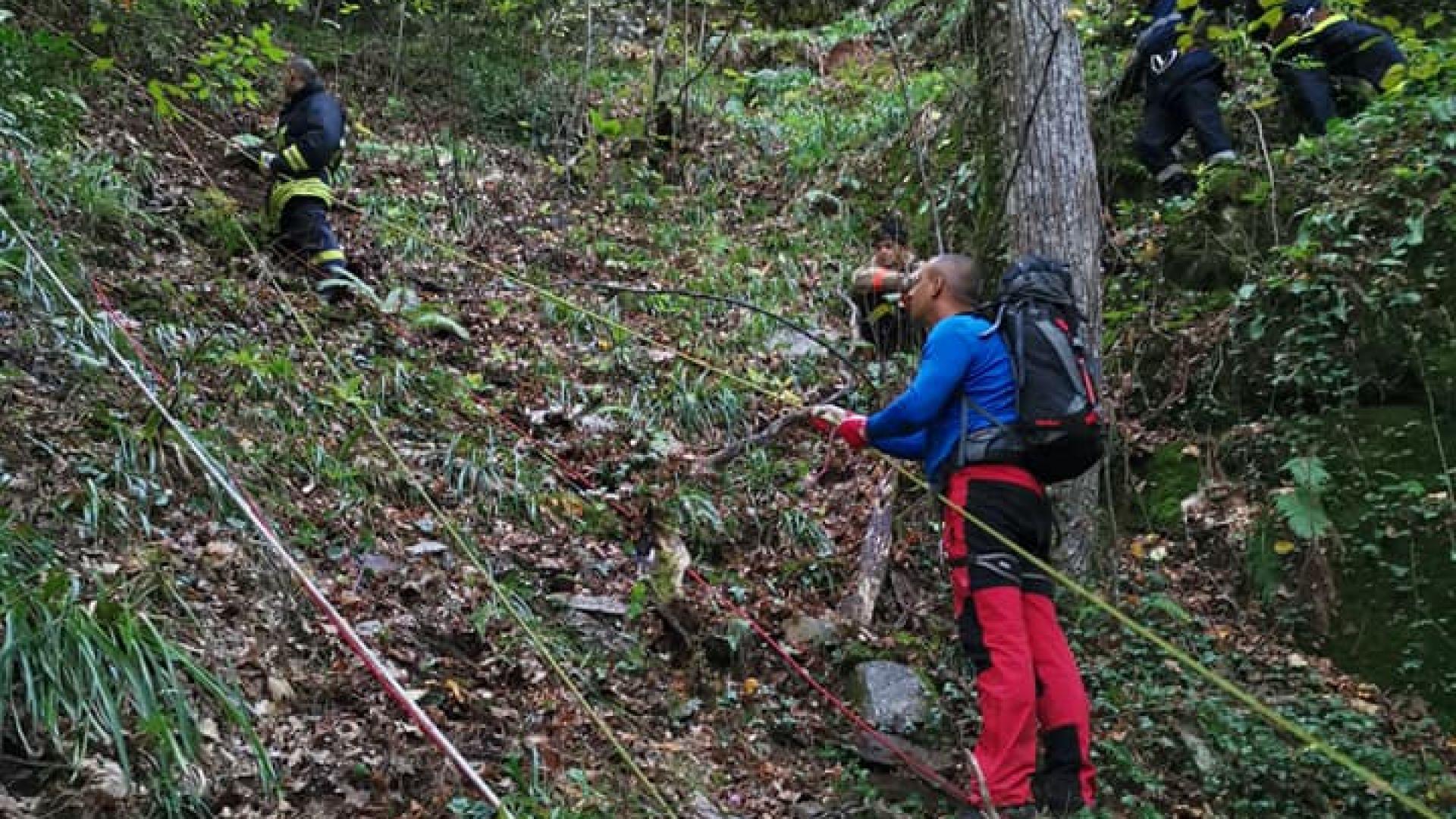 Откриха тялото на изгубената в Рила жена, потвърдиха от Планинската