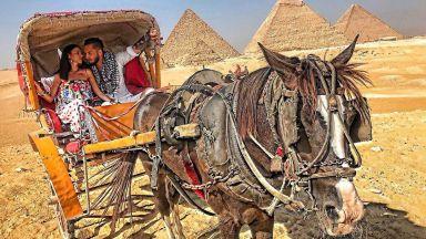 Джино Бианкалана и Кристиана в романтична египетска приказка