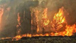 Обширни горски пожари обхванаха Ливан и Сирия