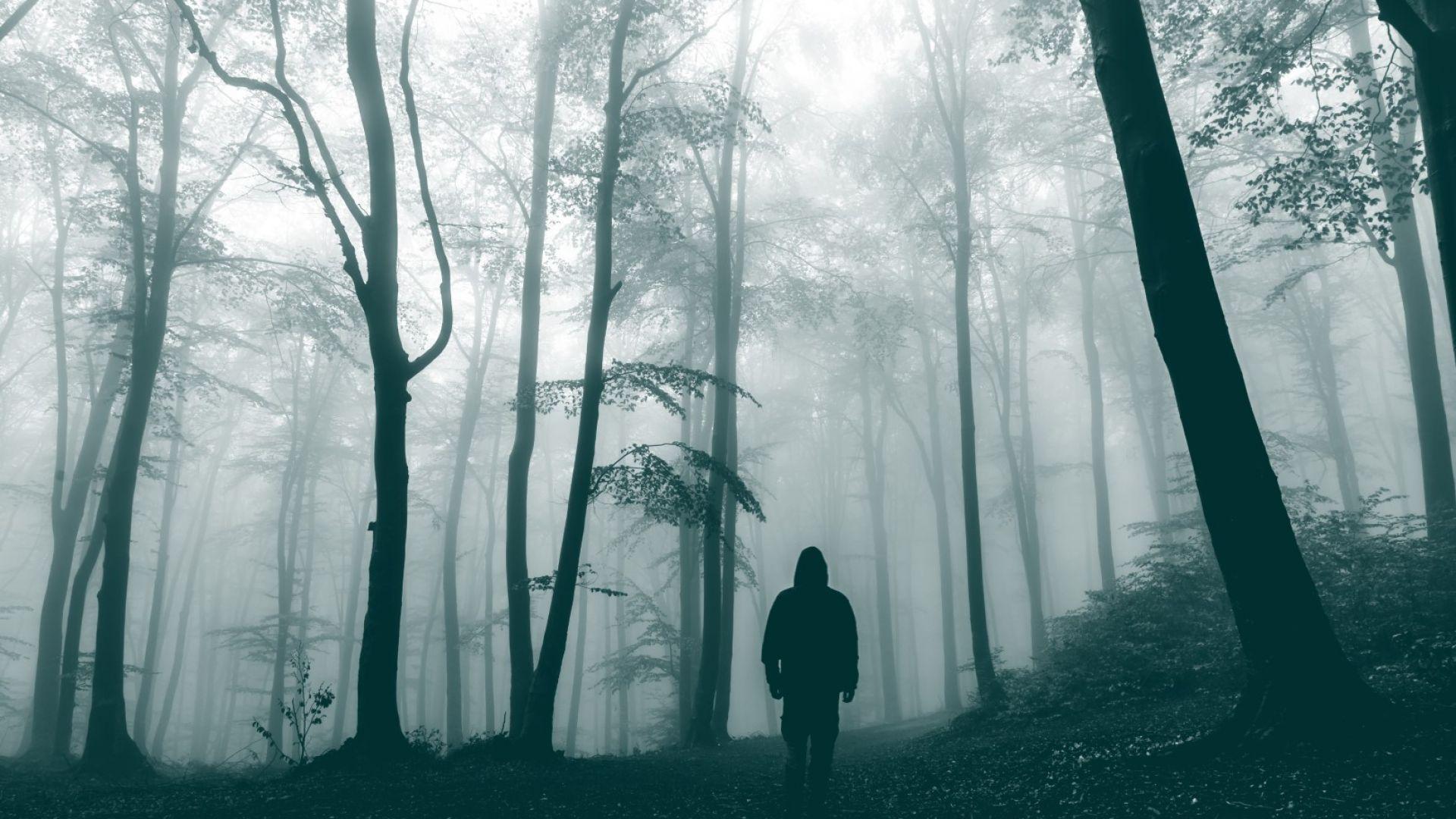 Горите-призраци - рожби на климатичните промени